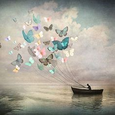 Buy The Quest by Christian Schloe as a high quality Art Print. (This one might be my favorite Christian Schloe print. So whimsical. Good for any wall in the house- even kid's room) Fantasy Kunst, Fantasy Art, Art Papillon, Butterfly Art, Butterflies, Canvas Prints, Art Prints, Painting Canvas, Surreal Art