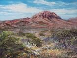 """Scents of the Desert by Lindy C Severns 