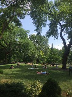 Da serie: verão em NY: Um dos muitos oásis que a gente encontra caminhando por Manhattan. A Selva de Pedra é, na realidade, uma das cidades metropolitanas que conheço que tem mais praças e parques espalhados por todas as vizinhanças, eles são belos, limpos e seguros, e são o point perfeito pra relaxar da correria do dia a dia. 🌳☀️🗽