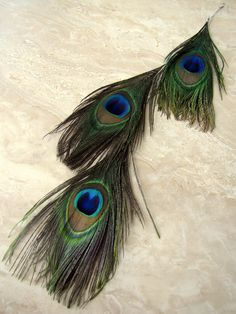Peacock Feather Earring  Extra Long Double by peacefrogdesigns, $26.00 this is super long and beautiful!