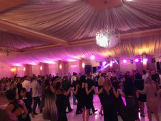 Formatie Muzica Populara Calarasi - Muzica de petrecere
