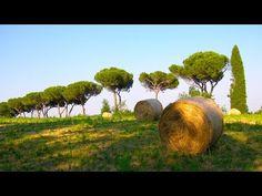 Lazio nature #youritaly #raiexpo #Lazio #italy  #expo2015 #experience #visit #discover #culture #food #history