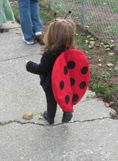 Ladybug Wings for Laurel