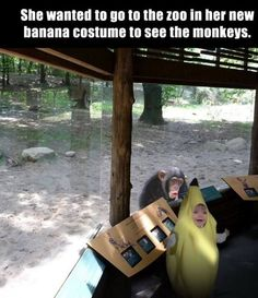 Images of the week, 121 images. She Wanted To Go To The Zoo In Her Banana Costume |   See More about the zoo, zoos and bananas.