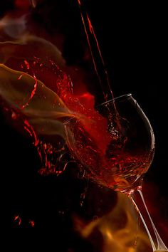 Fire Wine Photograph by Mark McKinney - Fire Wine Fine Art Prints and Posters for Sale fineartamerica.com