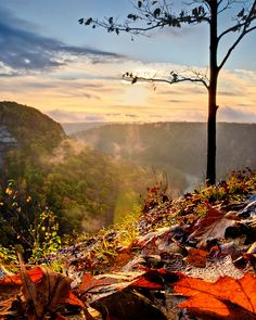Letchworth State Parks, NY  I can't believe that I've never been there. This must be remedied!