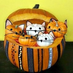 Pumpkin full of Kittens. Adorable and easy tutorial!