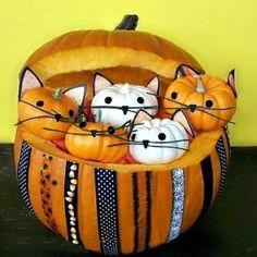 pumpkin crafts, cat, halloween pumpkins, halloween crafts, craft projects, craft tutorials, kittens, parti, pumpkin full