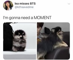 BTS yeontan grown up Monsta X, Kpop, Super Junior, Bts Love, One Direction, Bts Tweet, Got7, About Bts, Bulletproof Boy Scouts