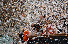 Purdy: 18-inning triumph was Giants' moment of truth - San Jose ...