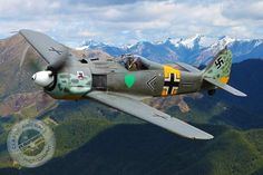 Fw-190A8/N based on New Zealand CLASSIC AIRCRAFT PHOTOGRAPHY
