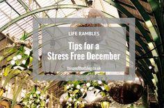 Life Rambles: Stress Free December