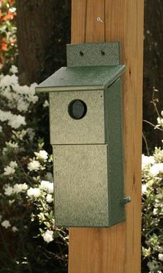 Songbird Essentials Bluebird Nesting Box, Green
