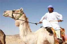 Картинки по запросу верблюды и кочевники