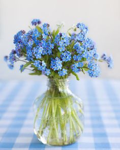 Image result for blue flowers