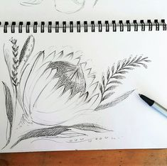 PROTEA 1.a.1#Painting #Process #step-by-step Tree Sketches, Flower Sketches, Drawing Sketches, Flower Drawings, Pencil Drawings, Sketching, Step By Step Painting, Step By Step Drawing, Flower Step By Step