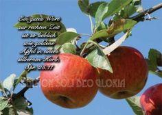 christliche Postkarte bei Bibel a la Carte