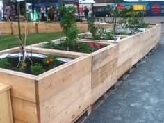 Raised beds from scaffolding boards, lined with builders bags at Mobile Garden City. On pallets so they can easily be lifted and moved to a new site.