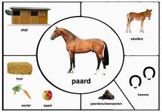 Farm Animals Preschool, Farm Animal Crafts, Fall Preschool Activities, Numbers Preschool, Animal Activities, Preschool Science, Montessori Activities, Le Zoo, Flashcards For Kids