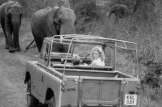 // the car - what else Kim Basinger in I Dreamed of Africa (2000)