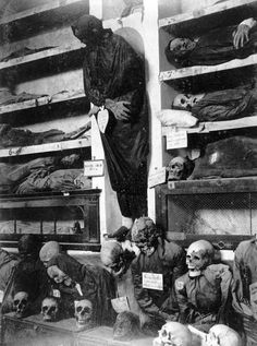 Mummies in the Palermo Catacombs, Italy Photographic Print by Giorgio Sommer Vintage Bizarre, Creepy Vintage, Creepy Images, Creepy Pictures, Images Terrifiantes, Arte Obscura, Arte Horror, Scary Halloween, Macabre