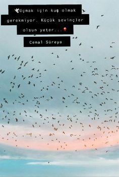 #cemal süreya Cool Words, Medusa, Favorite Quotes, Literature, Poems, Lyrics, Bombshells, Profile, Quotes