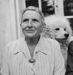 "The Lost Generation in 1920s Paris: Gertrude Stein, writer. ""Sarah & Gerald,"" a novel of Paris in the 1920s, by Christopher Geoffrey McPherson."
