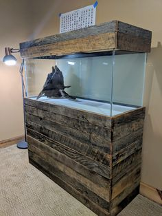 Latest Snap Shots Reptile Terrarium stand Thoughts There's no question of which creating a puppy will bring much joy to help somebody's life. As soon as a lot of. Diy Aquarium Stand, Aquarium Setup, Home Aquarium, Aquarium Design, Aquarium Fish Tank, Fish Tank Bed, Fish Tank Stand, Terrarium Stand, Terrarium Reptile