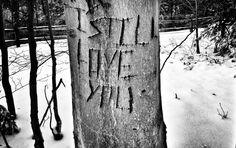 I Still Love You   by nanovivid