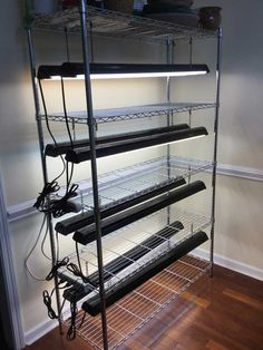Our grow light system. The shelves are lonely right now, but for most of the year, they're full of plants and seedlings.