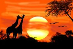 How to Draw Landscapes. Free step by step easy drawing lessons, you can learn from our online video tutorials and draw your favorite characters in minutes. Join our community and create your own Landscapes drawing lessons. African Drawings, African Paintings, Nature Paintings, Beautiful Paintings, Landscape Drawings, Bird Drawings, Art Drawings Sketches, Landscape Paintings, Drawing Sunset