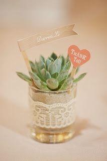 Tendencia: decorar con tunas y mini plantas
