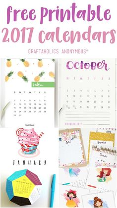 Start fresh in 2017 with one of these Free Printable 2017 Calendars! Nothing is more satisfying than a clean start each year!