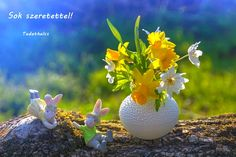 Ostern in der Natur von Deutschland ✧ Local City Guide Free Pictures, Free Images, Still Life, Tarot, Easter, Spring, Nature, Mosaic Ideas, City