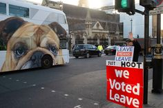 """Stuart Franklin - London. Westminster. 14th January 2019. Protestors outside the Houses of Parliament the day before the historic vote on Brexit. Leave voter is Mr Robert Wright (64) who is protesting outside Parliament today """"because we could be seeing the end of our democracy"""". """"I am not a political person,"""" says Wright, who voted Conservative in the last election. Stuart Franklin, Vote Conservative, Vote Leave, Houses Of Parliament, Westminster, The Outsiders, January, Politics, London"""