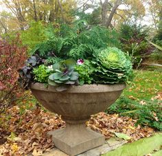 Fall container planting in urn