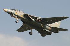 * Grumman F-14A Tomcat Sharifi * Iran Air Force.