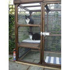 Bespoke Outdoor Cat Run, Cat Enclosure, Cat Pen Outdoor Cat Run, Cat House Outdoor, Diy Cat Enclosure, Outdoor Cat Enclosure, Reptile Enclosure, Cat Pen, Cat Kennel, Cat Cages, Cat Playground