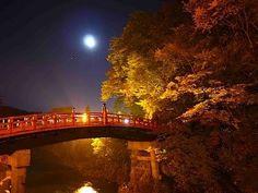 [HD]世界遺産 秋の日光東照宮の紅葉 The World Heritage in Nikko 紅葉便り