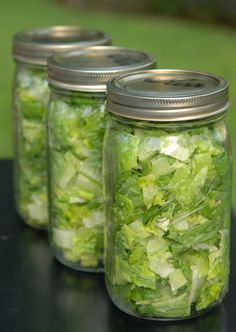 Technique for keeping lettuce fresh! - Click image to find more DIY & Crafts Pinterest pins