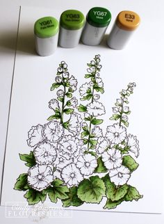 6a00d834eaf91453ef0191030c3827970c-pi (1000×1366) Copic Coloring by Cindy Lawrence from Flourishes