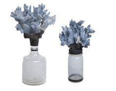 Jamie Dietrich bottles