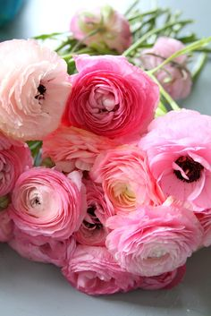 I LOVE these flowers. I think these may be Peonies or Ranunculus.