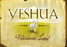 """YESHUA THE """"PASSOVER LAMB"""" OF GOD!!!       Then Moses called for all the elders of Israel and said unto them Draw out and take you a lamb according to your families and kill the passover."""