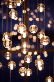 I wanna find outdoor lights and hang them like this from my frangipani tree