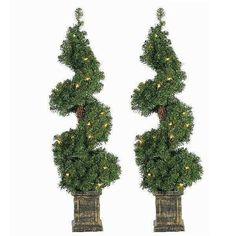 Sterling Tree Company Potted Spiral Pre-lit Christmas Tree - Set of 2 Spiral Christmas Tree, Spiral Tree, Holiday Tree, Christmas Décor, Framing Doorway, Tree Company, Spiral Shape, Potted Trees, Bronze