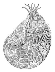 New Ocean Plants Coloring Pages 51 Adult coloring book Twenty