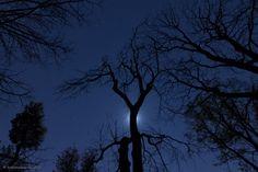 Bright Night by Bobi Dojcinovski on 500px