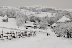 preluca noua-maramures Romania, Snow, Country, Winter, Travel, Outdoor, Plant, Winter Time, Outdoors