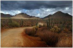 Arizona desert | Arizona_Desert.jpg